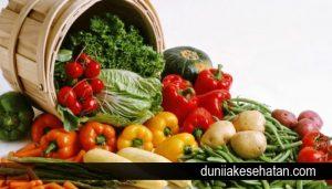 Sayur sayuran