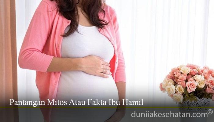 Pantangan Mitos Atau Fakta Ibu Hamil